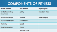 6 Health Related Components of Fitness